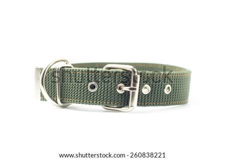 dog collar isolated on white background - stock photo