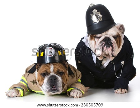 dog dressed up as firefighter and policeman on white background - stock photo