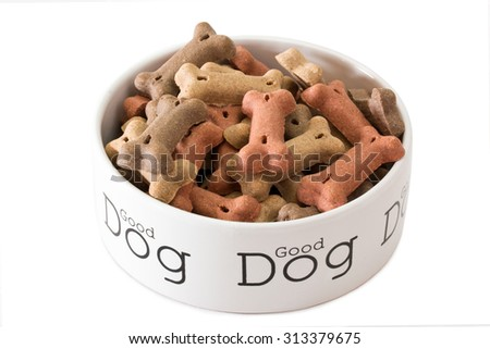 Dog dry food in a bowl isolated on white background