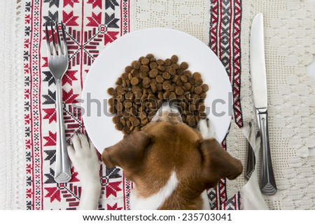 Dog eats for the laid table with cutlery and cloth embroidered with folk ornament. top view - stock photo