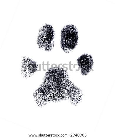 Dog fingerprint from my own pet - stock photo