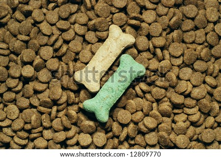 Dog food background with two bone shaped treats placed on top