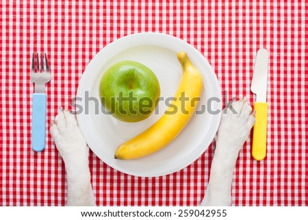 dog food bowl with an apple and banana , with knife and fork  on tablecloth,paws of a dog - stock photo