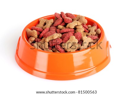 dog food in bowl isolated on white - stock photo