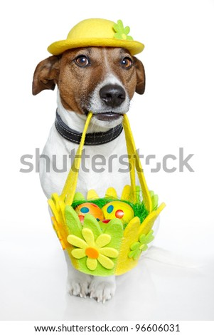 Dog holding colorful easter basket - stock photo