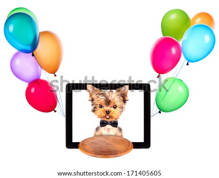 dog holding service tray on a digital tablet screen with balloons - stock photo