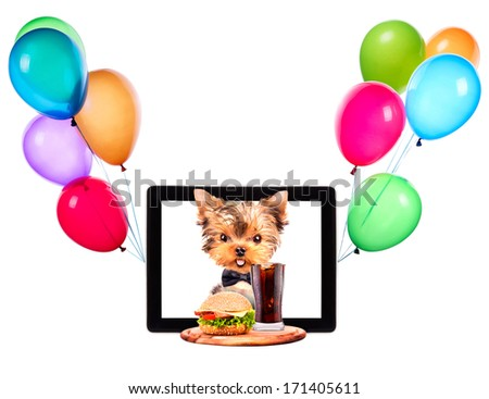 dog holding service tray with food and balloons on a tablet screen - stock photo