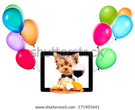 dog holding tray with food and balloons on tablet screen - stock photo
