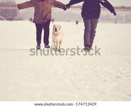 dog in family - stock photo
