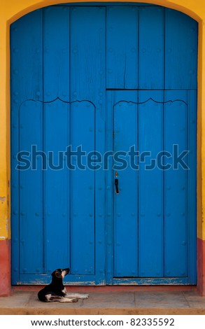 dog in front of a door in Trinidad, Cuba - stock photo