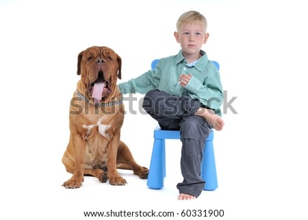 Dog is yawning while waiting for long hours - stock photo