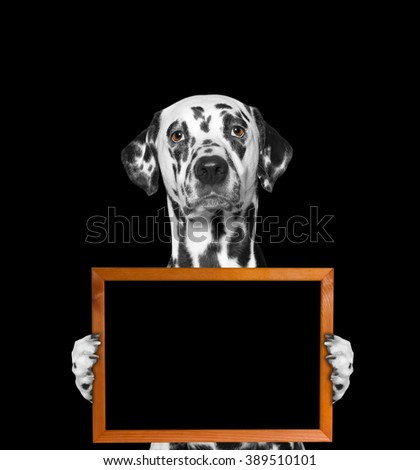 dog keeps frame in its paws