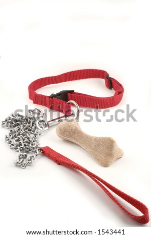 dog leash chain and dog buiscuit with copyspace - stock photo