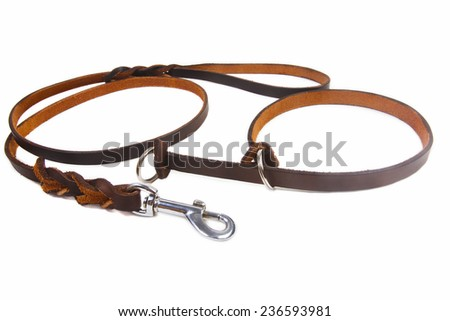Dog leather leash and collar on a white background - stock photo