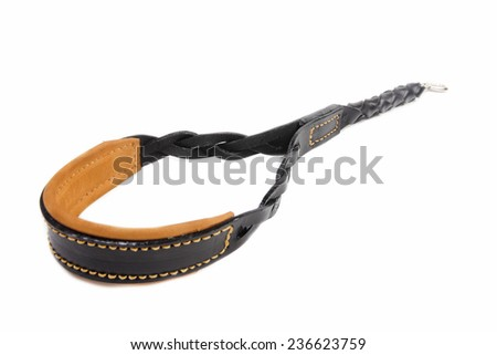 Dog leather leash on a white background - stock photo