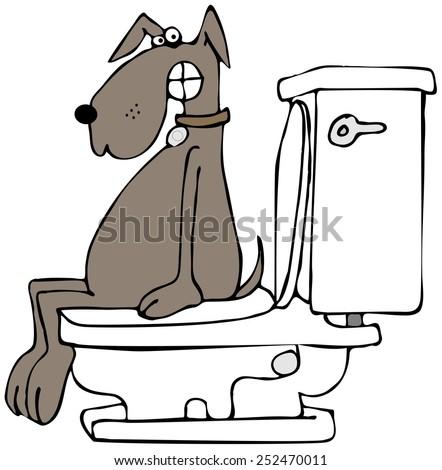 Dog on a toilet - stock photo