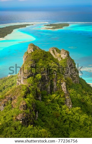Dog on the rock, Maupiti, French Polynesia - stock photo