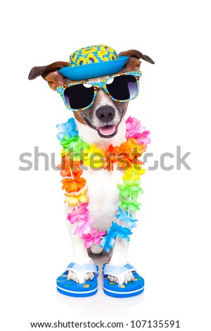 dog on vacation with hawaiian lei and fancy hat - stock photo