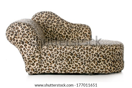 dog or cat bed or couch isolated on white background - stock photo