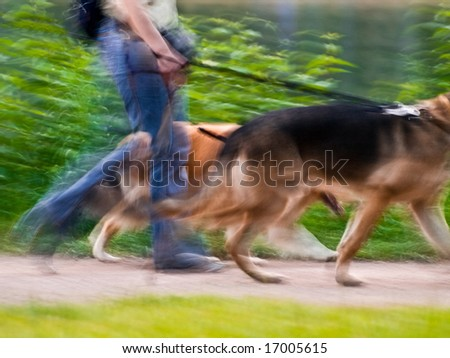 Dog owner, blurry motion - stock photo