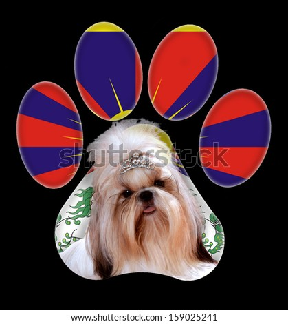 Dog portrait with paw shape and country flag in background. - stock photo