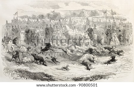Dog race in Louisbourg, Wurttemberg. Created by Janet-Lange after Braien, published on L'Illustration, Journal Universel, Paris, 1858 - stock photo