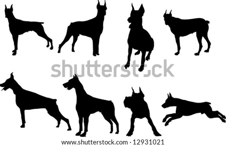 dog set 1 - stock photo