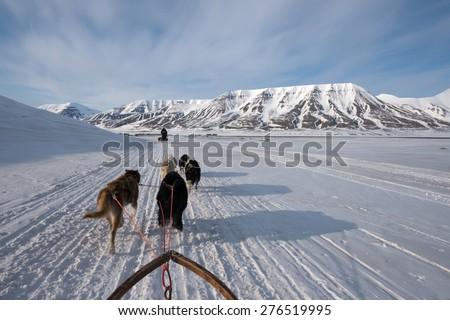 Dog sled tour across a barren winter landscape, Svalbard, Norway - stock photo