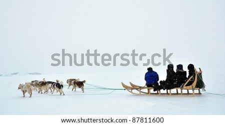 Dog sledging trip in cold snowy winter, running dogs, Greenland - stock photo
