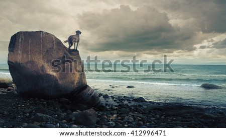 Dog standing on a rock and looking over the ocean - stock photo
