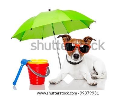 dog sunbathing with umbrella - stock photo