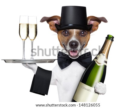dog toasting new years eve with champagne and service tray - stock photo