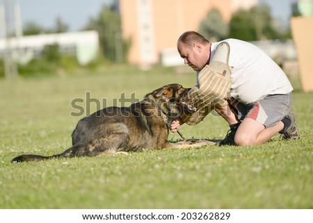 Dog trainer with a german shepherd  - stock photo
