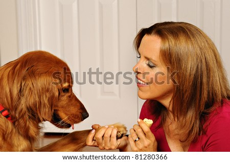 Dog Training woman teaches dog to shake hands - stock photo