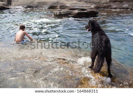 Dog watching little boy swimming in the sea - stock photo