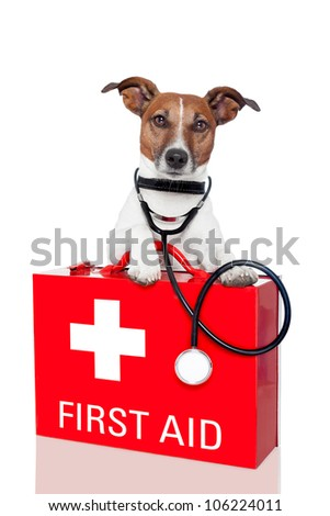 dog with a red  first aid kit - stock photo