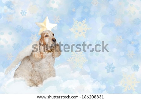 Dog With Angel Wings In Heaven