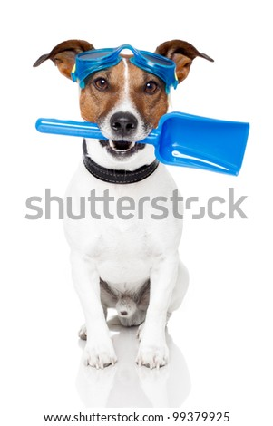 dog with goggles and a shovel - stock photo