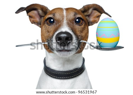 dog with spoon and easter egg - stock photo