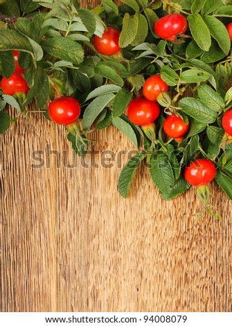 Dogrose on brown wooden fence. Beautiful village background - stock photo
