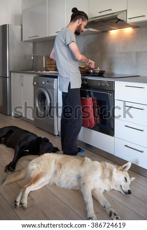 Dogs lying by the feet of their owner while he cooks dinner, comfortable loving friendship with pets - stock photo