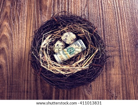 Dollar bills and egg in a birds nest on wooden background - stock photo