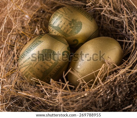 Dollar in golden eggs with nest, wealth concept. - stock photo