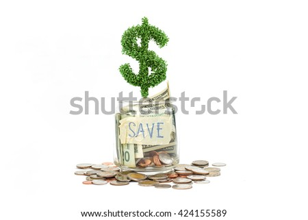 dollar sign tree with saving money. Money concept. - stock photo