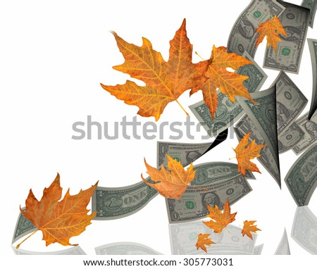 dollars and leaves falling - money spend - isolated for background - stock photo