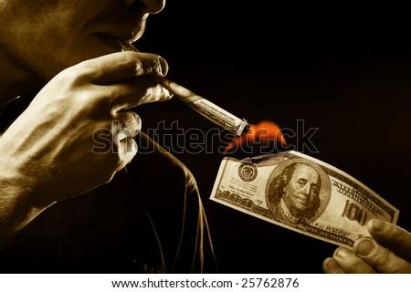 Dollars burn - stock photo