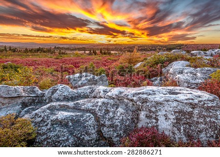 Dolly Sods Wilderness Area scenic sunset - stock photo