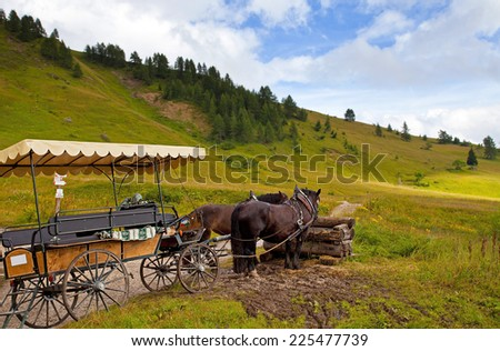 Dolomiti, Trentino Alto Adige, Italy - stock photo