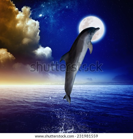 Dolphin jumping, full moon above sea, glowing clouds and horizon. Elements of this image furnished by NASA - stock photo