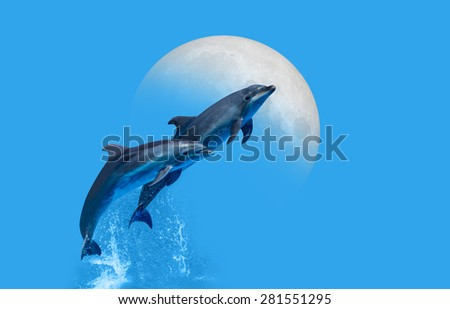 "Dolphin jumping in the mediterranean sea""Elements of this image furnished by NASA"" - stock photo"